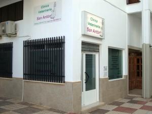 Clinica Veterinaria San Anton en Tomelloso