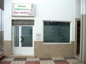 Entrada Clinica Veterinaria San Anton de Tomelloso