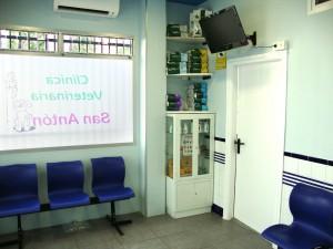 Sala de Espera Clinica Veterinaria San Anton en Tomelloso