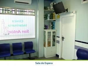 Sala de Espera Clinica San Anton de Tomelloso