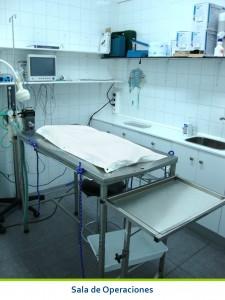 Sala de Operaciones de la Cliniva Veterinaria San Anton de Tomelloso